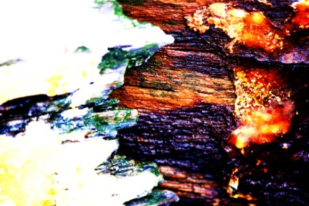 "Abstract Digital Photo Painting No. 67B - Titled ""Queenscliff Point Lonsdale ADAP"" April 2010 by Abstract Artist: Karen Robinson NB: All images are protected by copyright laws!"