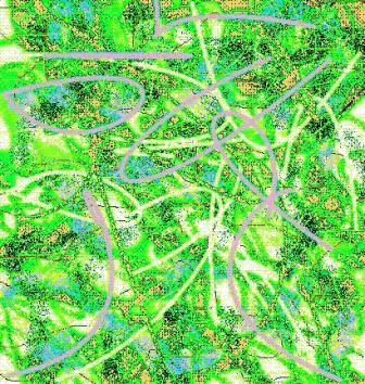 "Abstract Digital Photo Painting No. 2B ""Derby Day - Spotted Dress"" 2008 by Abstract Artist: Karen Robinson"