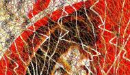 "Abstract Digital Photo Painting No. 8A ""Oaks Day - Feather in Hat"" 2008 by Abstract Artist: Karen Robinson NB: All images are protected by copyright laws!"