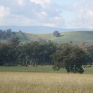 Valley of a Thousand Hills - Strath Creek Region Country Victoria - Aust. 2010 Photo 1 Photographed by Abstract Artist: Karen Robinson NB: All images are protected by copyright laws!