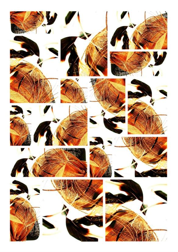 Collage Digital Photo Painting Version 2 Brown & Orange Feathers by Karen Robinson - Abstract Artist 2008. NB All images are protected by copyright laws!