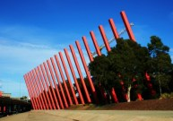 No. 10 - My Melbourne - Carrot Sticks next to Tullamarine Freeway - June 09 Photo taken by Karen Robinson Abstract Artist NB All images are protected by copyright laws!.JPG