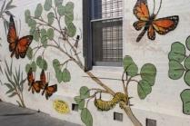 11. Melbourne Street Art - Thornbury Aug 4 2014 Photographed by Karen Robinson.JPG