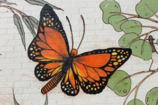 13. Melbourne Street Art - Thornbury Aug 4 2014 Photographed by Karen Robinson.JPG