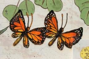 15. Melbourne Street Art - Thornbury Aug 4 2014 Photographed by Karen Robinson.JPG