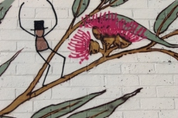 17. Melbourne Street Art - Thornbury Aug 4 2014 Photographed by Karen Robinson.JPG