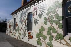 7. Melbourne Street Art - Thornbury Aug 4 2014 Photographed by Karen Robinson.JPG