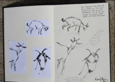 View No. 2 - Karen Robinson's ink drawings created in Marco Luccio's arts session on creating powerful & expressive drawings 2015.JPG