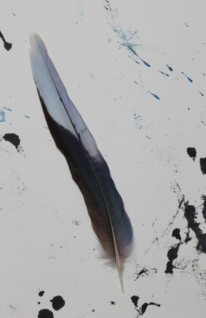 No. 1 of 2 Creative Writing Group - Artwork Titled 'Beautiful Other' Feather resting on - Schmincke Ink on A4 Paper by Karen Robinson - Abstract Artist NB All images are copyright protected Oct 2015.JPG