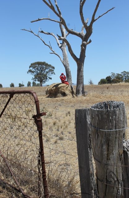 2 of 3 Photo-taking & Story-telling, Creative Writing by Karen Robinson Titled 'Santa's Pooped!' Just south of Bendigo Dec 2015 NB All images are protected by copyright laws.jpg