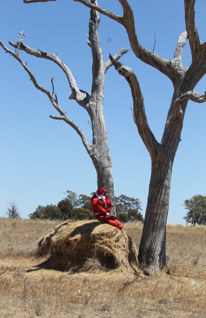 3of 3 Photo-taking & Story-telling, Creative Writing by Karen Robinson Titled 'Santa's Pooped!' Just south of Bendigo Dec 2015 NB All images are protected by copyright laws.jpg