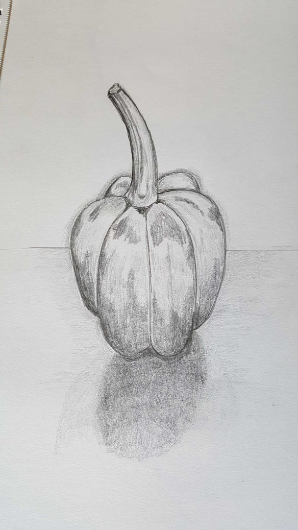 4-11 Class 5 'Produce Drawings' CAE Class - Certificate 111 in Visual Arts - Drawing & Photo by Karen Robinson Aug 2016 NB All images are protected by copyright laws