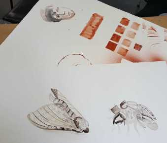 17-20 Class 8 'Produce Drawings' CAE Class - Certificate 111 in Visual Arts - Photograph by Karen Robinson Sept 2016 NB images protected by copyright laws