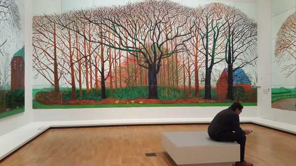 13 David Hockney Current Exhibition at National Gallery Victoria Nov2016 Photographed by Karen Robinson