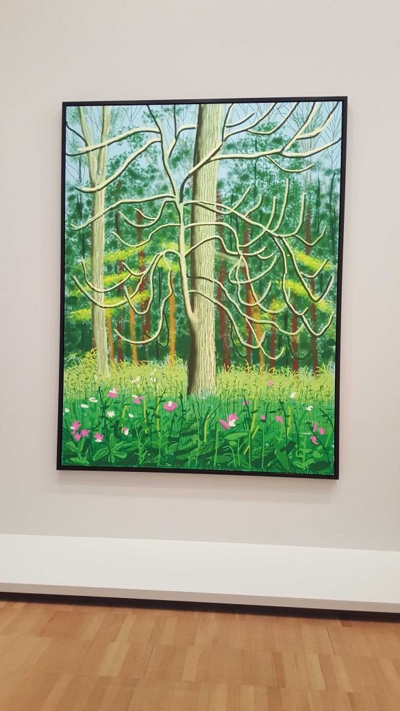 18 David Hockney Current Exhibition at National Gallery Victoria Nov2016 Photographed by Karen Robinson