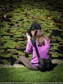 Royal Botanical Gardens Melbourne, Victoria - Australia. Karen Robinson's daughter taking photos of Dragon Flies on top of Water Lillies during a mother/daughter day. 2016 NB: All images are protected by copyright laws