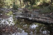 Blackwood, Victoria - Australia 'River Crossing - Lerderderg State Park'_Photographed by ©Karen Robinson_www.idoartkarenrobinson.com_February 2017