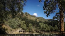 Lerderderg, Victoria - Australia 'Mackenzies Flat Picnic Area - Lerderderg State Forest'_Mark, Karen's husband standing in front of the walk over Lerderderg bridge _Photographed by ©Karen Robinson_www.idoartkarenrobinson.com - Feb 2017