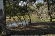 """Daylesford Region, Victoria - Australia """"Jubilee Lake""""_ Photographed by ©Karen Robinson www.idoartkarenrobinson.com June 2017. Comments: Husband and I visiting the region to take photographs on this beautiful, fresh winter's day."""