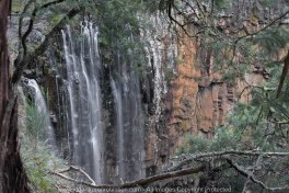 "Daylesford Region, Victoria - Australia_""Trentham Falls""_Photographed by ©Karen Robinson www.idoartkarenrobinson.com June 2017. Comments: Husband and I visiting the region to take photographs on this beautiful, fresh winter's day."