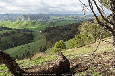 Strath Creek Region, Victoria - Australia_'Valley of a Thousand Hills'_Photographed by ©Karen Robinson_www.idoartkarenrobinson.com May 2017 Comments: Day photographing with my daughter and husand who kindly drove us location to location.