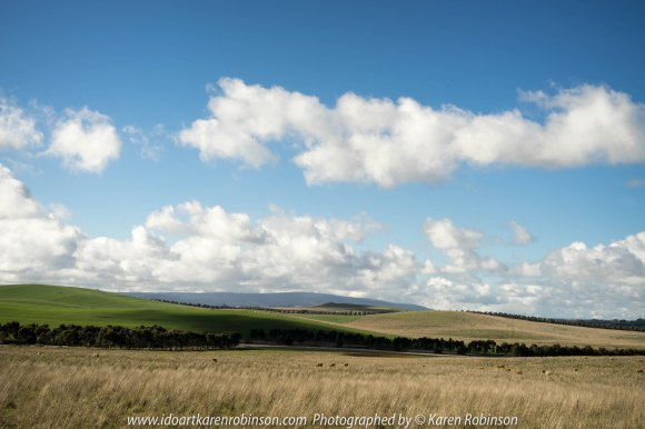 "Wallan Region, Victoria – Australia ""Rural Landscape""_Photographed by ©Karen Robinson www.idoartkarenrobinson.com July 2017. Comments: Day out with daughter photographng landscape and wildlife on a beautiful winter's day."