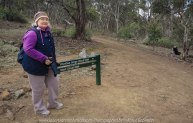 Werribee, Victoria – Australia 'Werribee State Gorge State Park'_Photographed by ©Karen Robinson www.idoartkarenrobinson.com June/July 2017. Comments: Werribee Gorge offers spectacular views, rugged natural beauty with bushwalking and rock climbing for those fit enough - my hubby and I did the walking!