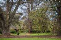 "Elsternwick, Victoria - Australia_Photographed by ©Karen Robinson_ www.idoartkarenrobinson.com September 10, 2017 Comments: My hubby and I with the Craigieburn Camera Club at Rippon Lea House and Gardens. ""It is one of Australia's finest grand suburban estates and the first to achieve National Heritage Listing, recognising its unique significance. The historic mansion is located within a vast pleasure garden of sweeping lawns that cover more than 14 acres and features a windmill, lookout tower, heritage orchard, lake, waterfall, fernery and more!"" Photograph featuring garden looking over lake."