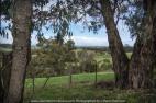Yan Yean Region, Victoria - Australia_Photographed by ©Karen Robinson. www.idoartkarenrobinson.com 2017 Aug 27 Comments: Chilly Winter's day on Ridge Road looking south across the farming region of Yan Yean towards Arthurs Creek.