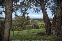 Yan Yean Region, Victoria - Australia_Photographed by ©Karen Robinson. www.idoartkarenrobinson.com 2017 Aug 27 Comments: Chilly Winter's day on Ridge Road looking south across the farming region of Yan Yean towards Arthurs Creek.
