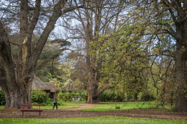 """Elsternwick, Victoria - Australia_Photographed by ©Karen Robinson_ www.idoartkarenrobinson.com_September 10, 2017 Comments: My hubby and I with the Craigieburn Camera Club at Rippon Lea House and Gardens. """"It is one of Australia's finest grand suburban estates and the first to achieve National Heritage Listing, recognising its unique significance. The historic mansion is located within a vast pleasure garden of sweeping lawns that cover more than 14 acres and features a windmill, lookout tower, heritage orchard, lake, waterfall, fernery and more!"""" Photograph featuring garden looking over lake."""