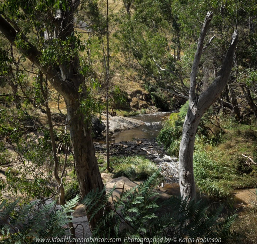 Gooram, Victoria - Australia 'Seven Creeks Wildlife Reserve' Photographed by Karen Robinson Dec 2017 www.idoartkarenrobinson.com NB. All images are protected by copyright laws. Comments: We stopped for lunch amongst the tranquil surroundings of the Seven Creeks and view the Gooram Falls.