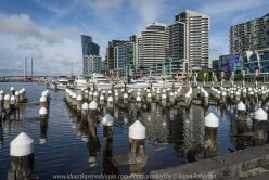 "Melbourne, Victoria - Australia ""Docklands Waterfront"" Photographed by Karen Robinson NB Copyright Protected www.idoartkarenrobinson.com December 17, 2017. Comments: Out-and-about early Sunday morning photographing scenes around the Yarra River Harbour water's edge at Docklands."