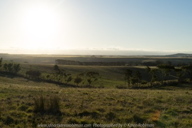 Mickleham, Victoria - Australia 'Sunset over Farmland' Photographed by Karen Robinson NB All images are protected by copyright laws_ www.idoartkarenrobinson.com December 11, 2017 Comments: Beautiful summer evening photographing the sunset during the 'golden hour'. It was quiet and the air fresh; I found myself completely immersed in my creativity.