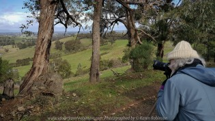 Yan Yean Region, Victoria - Australia_Photographed by ©Karen Robinson_www.idoartkarenrobinson.com 2017 Aug 27 Comments: Chilly Winter's day on Ridge Road looking south across the farming region of Yan Yean towards Arthur's Creek.