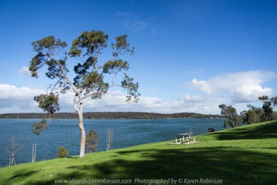 Yan Yean Region, Victoria - Australia_Photographed by ©Karen Robinson_www.idoartkarenrobinson.com 2017 Aug 27 Comments: Chilly Winter's day just off Ridge Road at Yan Yean Top Lookout - Yan Yean Reservoir Park.