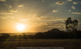 Euroa, Victoria - Australia 'Marylands Property' Photographed by Karen Robinson Jan 2018 www.idoartkarenrobinson.com NB. All images are protected by Copyright laws. Comments: Managed to capture a sunrise on a property called 'Marylands' Euroa, Victoria. The early morning was just beautiful and all that could be heard were the native birds calling out - welcoming a new day! Cattle grazed quietly in the far distance as the dawn sun pushed its way up over the tree-lined crest.