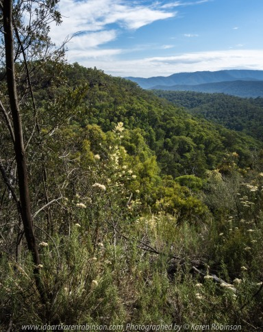 Cheshunt, Victoria - Australia 'Paradise Falls and Views of Mount Bulla' Photographs by Karen Robinson NB All images are protected by copyright laws. Comments - The walk to the falls was lengthy, especially for my hubby and I at our age, but we enjoyed the surrounding bush and views during the stroll. Upon reaching the falls itself, we found there was no water running over and down the rocks which was disappointing. This would need to be revisted during winter time as it is mid-summer time hence the lack of water.