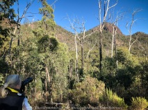 Taggety, Victoria - Australia 'Cathedral Range State Park Region' Photographed by Karen Robinson March 2018 NB All images are protected by copyright laws Comments -We travelled along a dirt road which is OK to use during the dry season but in the wet season a 4WD would be needed. Due to the difficulties of the walking tracks and climbs, hubby and I could only do the driving part of the sight seeing within this region - a disappointment but it was a very beautiful day. #KarenRobinsonPhotographer