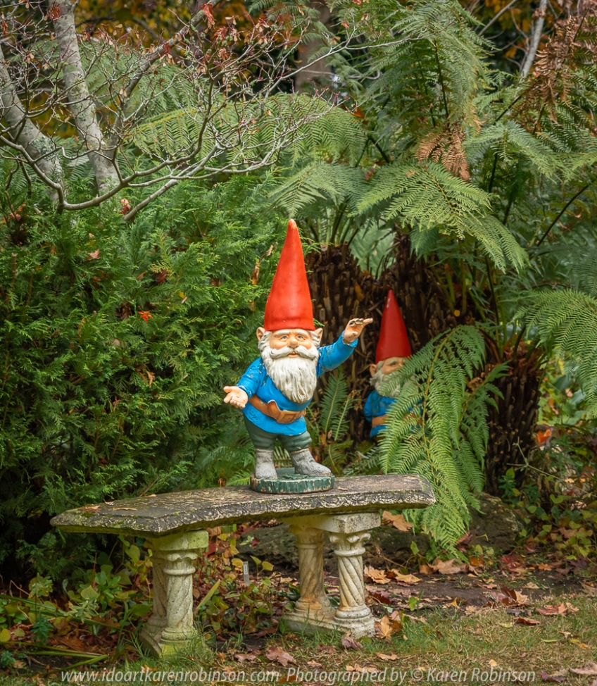Mount Macedon - Victoria - Australia 'Gardens Of Tieve Tara' Photographed by Karen Robinson May 2018 NB. All images are protected by copyright laws. Comments - A grey, cold Autumn day spent photographing these beautiful, picturesque gardens consisting of 7.5 acres of lush grounds, a whimsical playground, lakes, geese and fountains with hubby.