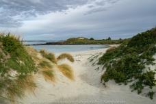 Port Fairy, Victoria - Australia 'Griffiths Island' Photographed by Karen Robinson May 2018 NB. All images are protected by copyright laws. Comments - Our time at Port Fairy was spent walking around Griffiths Island which is part of the Port Fairy Coastal Reserve. We experienced: picturesque beach scences; sighted the Port Fairy Lighthouse; wide ocean views; natural vegetation where we spotted playful small wallabies; coastal waterbirds; and lots of fresh air!