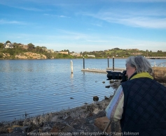Warrnambool, Victoria - Australia 'Hopkins River' Photographed by Karen Robinson May 2018 NB All images are protected by copyright laws. Comments - While at the 64th Convention & Interclub Photographic Exhibition in May 2018, hubby and I took some timeout to visit a scenic area of the Hopkins River. It was late afternoon, the weather beautiful and a lovely way to chill out together. I was particularly happy to be able to photograph a pair of Australian Pelicans that were drifting happily alongside of the jetty.