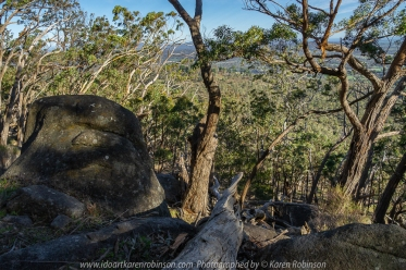 Faraday, Victoria - Australia 'Mount Alexander Regional Park - Dog Rocks' Photographed by Karen Robinson NB. All images are copyright protected. Comments - Dog Rocks located just off Joseph Young Drive features huge conglomeration of ginormous picturesque granite rock outcrops. Native gum trees grow in a mangled fashion around these huge boulders; this with the late morning sunshine dappling its way through the bush helps make for interesting photographic opportunities. We spent some time at this location photographing and just enjoy the beautiful of the region. View through the bush could be seen looking out towards Harcourt. The reason for this area to be called Dog Rocks was because back in the nineteenth century, many dingos were seen around the rocks and manager Lockhart Morton of Sutton Grange Station in 1846 named the area Dog Rocks.