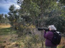 Mickleham, Victoria - Australia 'Mt Ridley Nature Reserve' Photographed by Karen Robinson October 2018. Comments - Mid-morning walk through a local reserve looking for birds to photograph. The sun was shining and a soft breeze kept us cool - it made for a very pleasant outing. Photograph featuring Karen Robinson photographing birds.