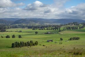 Comments: Yarra Glen Region, Victoria - Australia September 2018. The last day in September, a beautiful spring day, hubby and I decided to take a drive through the Yarra Glen Region. At this time of the year the valleys and hillsides are lush green. Vineyards feature widely throughout the region alongside of pastures where cattle happily grazed under the warm sunshine. Grey clouds gathered up along the mountains ranges as the day drifted towards its end. A beautiful spring day we so much enjoyed – a good to be alive day! NB: All images are protected by copyright laws Photographed by Karen Robinson www.idoartkarenrobinson.com