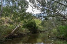 Bulla, Victoria - Australia 'Organ Pipes National Park' Photographed by Karen Robinson November 2018 Comments - Overcast with a pleasant bush walking temperature, the National Park provided hubby and I with beautiful nature scenic landscape views and a varying number of birds to photograph. Photograph featuring Jacksons Creek.