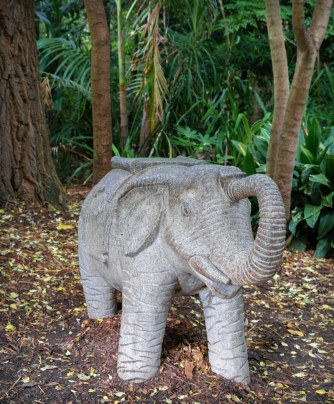 Parkville, Victoria - Australia 'Melbourne Zoo - Day 2' Photographed by Karen Robinson December 2018 Comments - Hubby and I decided to spend another day at the Zoo, this time concentrating on photographing the elephants.