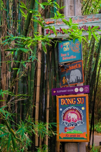 Parkville, Victoria - Australia 'Melbourne Zoo - Day 2' Photographed by Karen Robinson December 2018 Comments - Hubby and I decided to spend another day at the Zoo, this time concentrating on photographing the elephants. Photograph featuring Elephant Zoo Signage