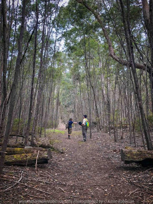 Deptford, Victoria - Australia 'Nicholson River Bush Walk' Photographed by Karen Robinson December 2018 Comments - Hubby, his brother and I took a bush walk alongside of the Nicholson River visiting historic landmarks on our way through Australian bush. Photograph featuring hubby with his brother bush walking.