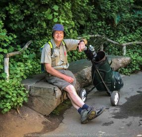 Parkville, Victoria - Australia 'Melbourne Zoo Trip 5' Photographed by Karen Robinson January 2019 Comments - Hubby and I decided to spend another day at the Zoo, this time concentrating on photographing the Western Lowland Gorillas. Photograph featuring Karen's Hubby who helps carry the camera equipment in an old golf bag!
